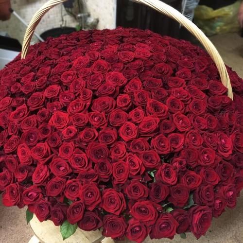 Купить на заказ 1001 роза с доставкой в Есиле