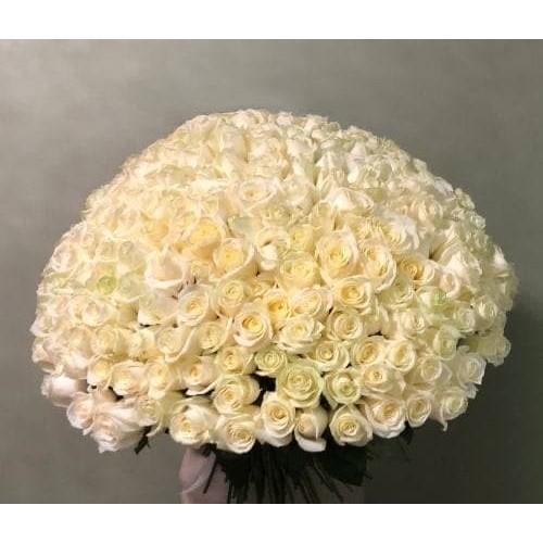 Купить на заказ 201 роза с доставкой в Есиле