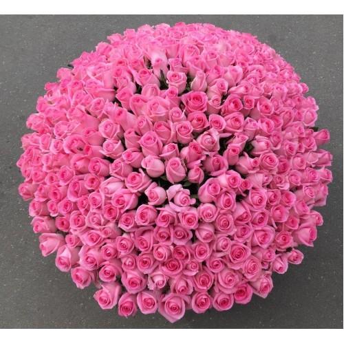 Купить на заказ 501  роза с доставкой в Есиле