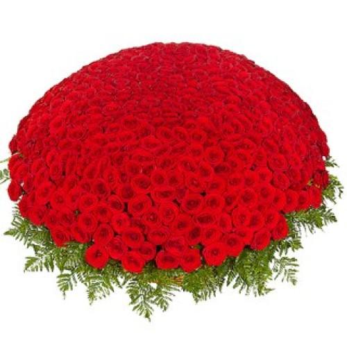 Купить на заказ 301  роза с доставкой в Есиле